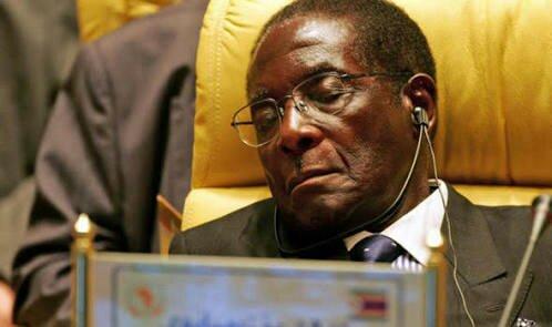 Zimbabwe in the teeth of a crocodile