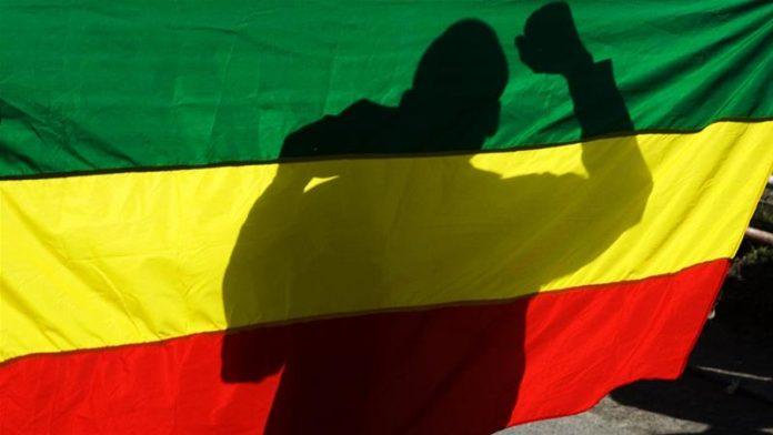 Ethiopia flag protester
