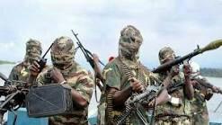 Nigerian government negotiates with Islamist terrorists, kills off Biafra agitators