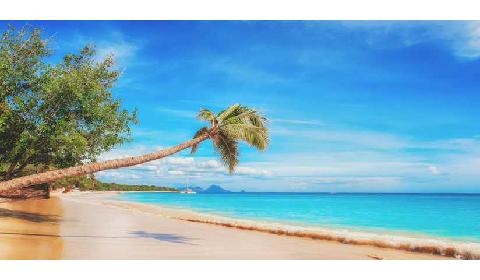 beautiful view of the Gambia beachside